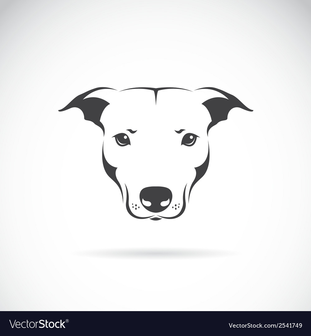 Image of a dog head vector