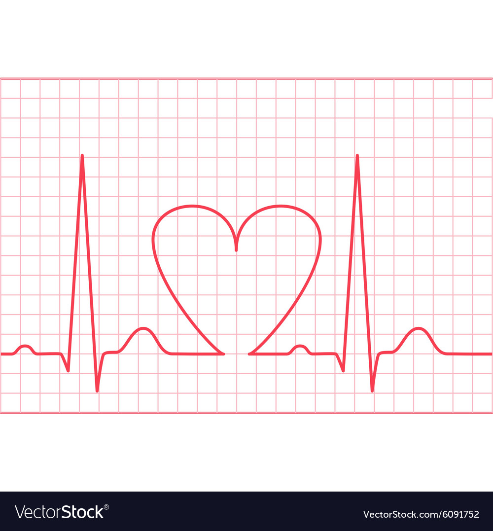 Ecg  electrocardiogram on red grid vector