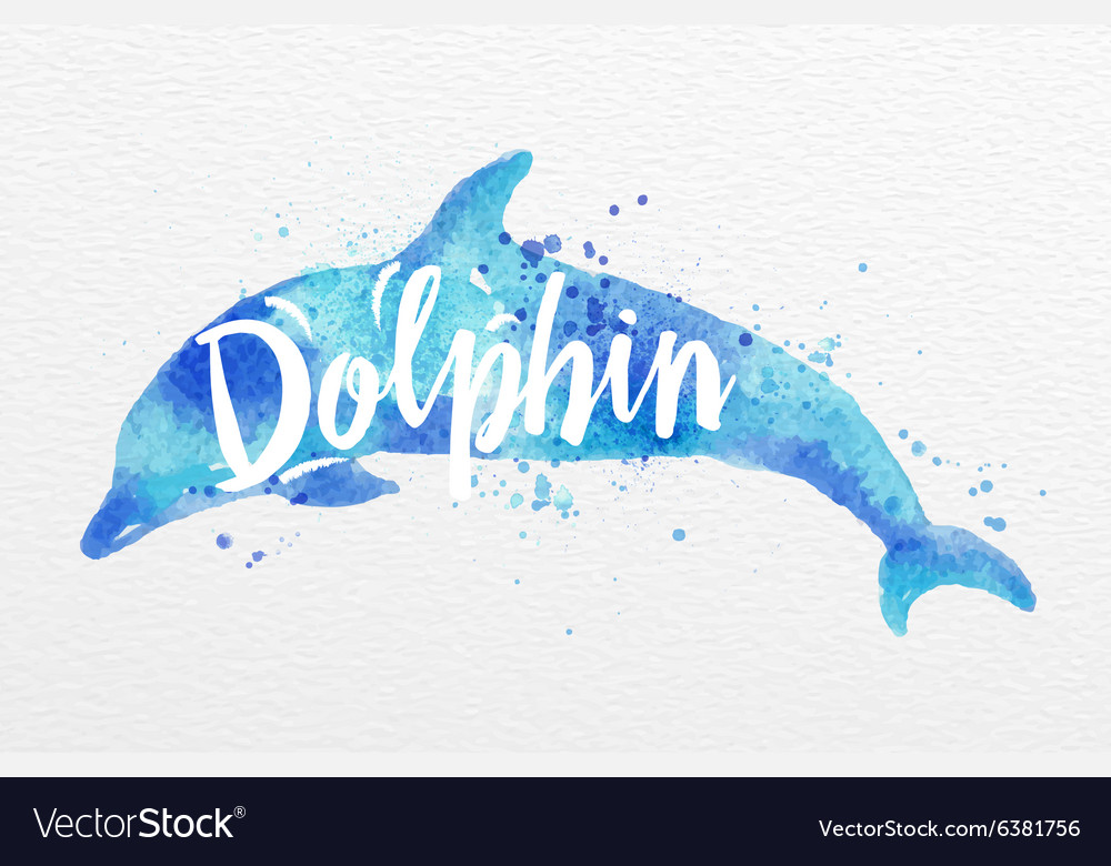 Painted animals dolphin vector