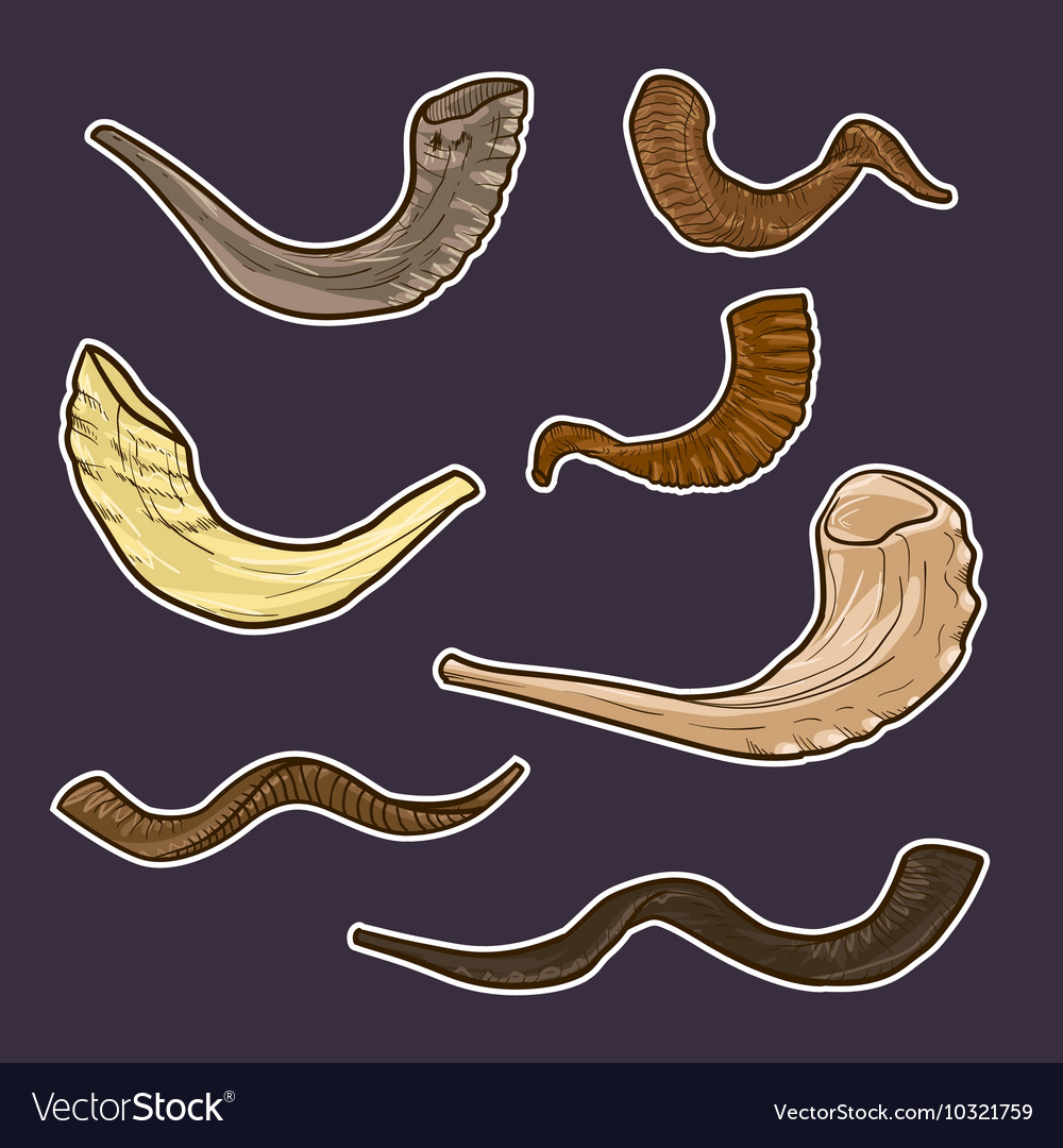 Set of doodle jewish horn rosh hashanah history of vector