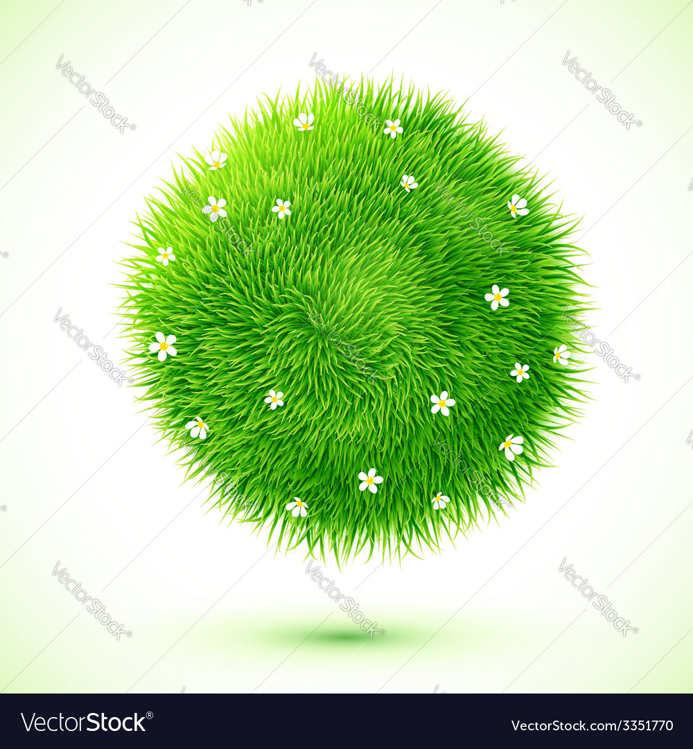 Green fluffy grass ball with chamomiles vector