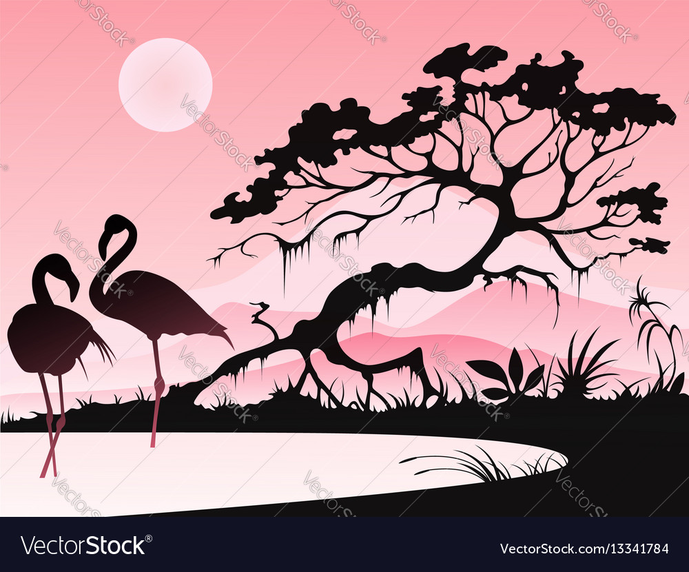 Landscape with two flamingos vector