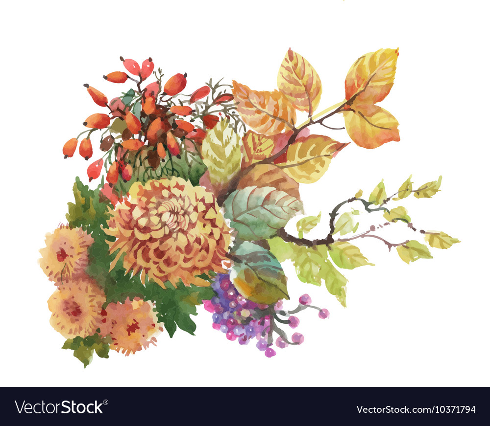 Watercolor autumn background with dogwood and vector