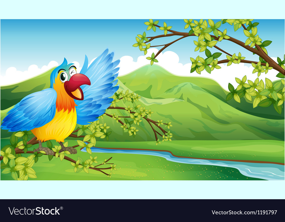 A big and colorful parrot near the river vector