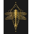 Golden dragonfly and geometric elements vector image