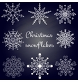Christmas Snowflakes set vector image