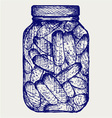 Preserved cucumbers in a jar vector image vector image