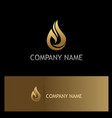 water drop ecology gold logo vector image