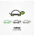 Turtle icon vector image
