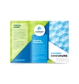 Trifold Business Brochure Design Template vector image