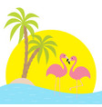 two pink flamingo standing on one leg palms tree vector image