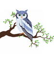 Owl standing on a tree branch vector image
