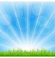 Green Background With Sunburst vector image