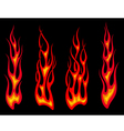 Set of long tribal fire flames vector image