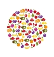 fruit icons in circle vector image vector image