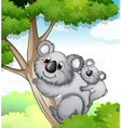 Bears in nature vector image