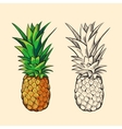 Outline pineapple and color cartoon vector image