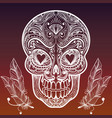 sketched mexican skull and feathers vector image