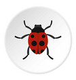 ladybug icon circle vector image