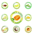 painted fruit icon vector image