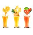 set of fruit juice splash in a glass orange vector image