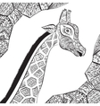 Beautiful adult Giraffe Hand drawn vector image