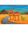 Desert Landscape background vector image