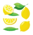 Fresh lemons with leaves lemon slice isolated on vector image