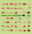 sketch colored meat elements collection vector image