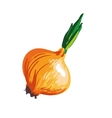 Onion cartoon vegetable drawing vector image