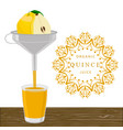 the theme quince vector image