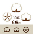 set of cotton icons emblems for clothing and vector image vector image