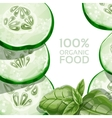 Background with green cucumber and basil vector image