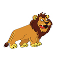 lion angry vector image