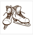 Ice skates isolated on white vector image vector image