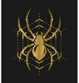 Golden spider and web vector image