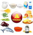 vitamin a and plant vector image vector image