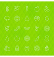 Fresh Fruit and Vegetable Line Icons Set over vector image
