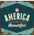 American Patriotic vintage style rusty metal sign vector image