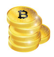 golden bitcoin cryptocurrency image vector image
