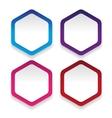Empty hexagon sticker set vector image