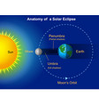 solar eclipse diagram vector image