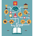 Infographic of education process birth of idea vector image