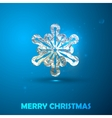 Holiday of a silver snowflake with foil text vector image