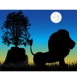 Silhouette lion on nature vector image