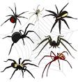 Spider set vector image