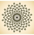 Ornamental round floral pattern vector image