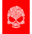 Floral skull on red background White roses and vector image