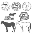 Set of horse meat labels and badges vector image