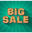 vintage text big sale with fire texture on green vector image